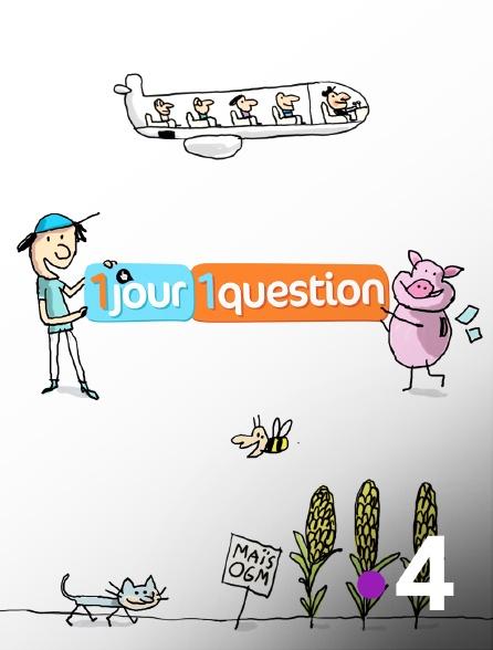 France 4 - Un jour, une question (OU Tennis : Coupe Davis)