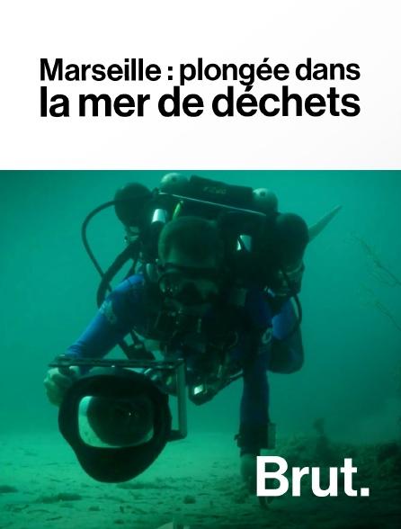 Brut - Marseille : plongée dans la mer de déchets