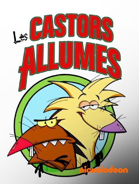 Nickelodeon - Les castors allumés