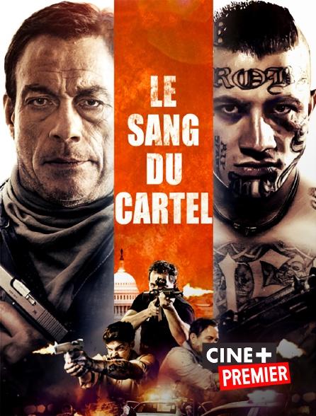 Ciné+ Premier - Le sang du cartel