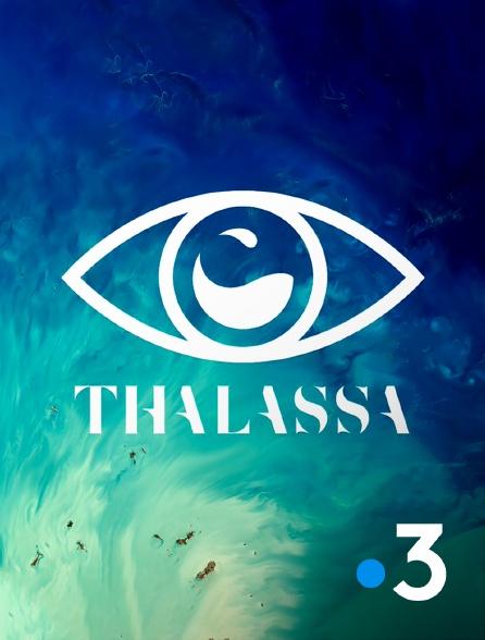 France 3 - Thalassa