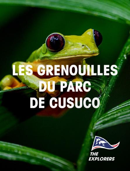 The Explorers - Les grenouilles du parc de Cusuco