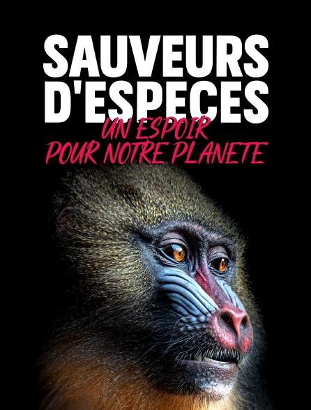 Sauveurs d'espèces : Un espoir pour notre planète