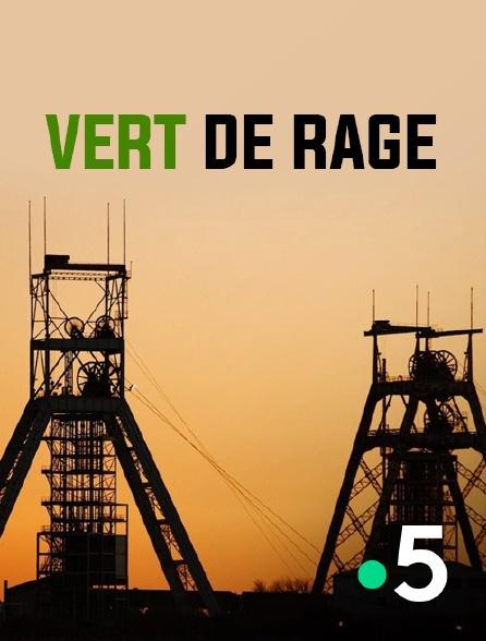 France 5 - Vert de rage