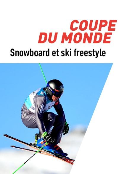 Ski freestyle : Championnats du monde