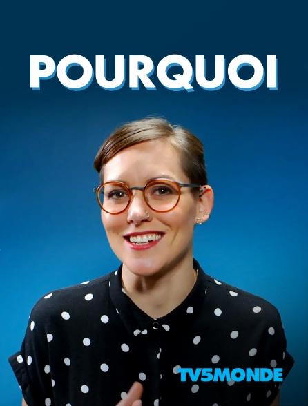 TV5MONDE - Pourquoi ?