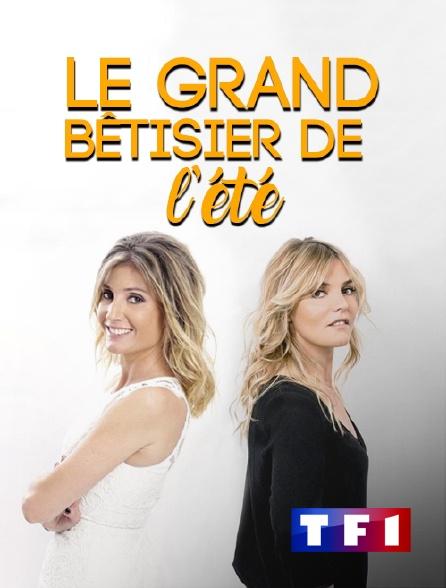 TF1 - Le grand bêtisier de l'été