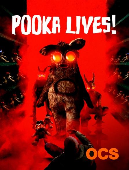 OCS - Pooka Lives !