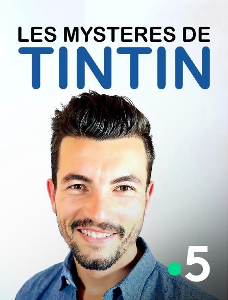 France 5 - Les mystères de Tintin
