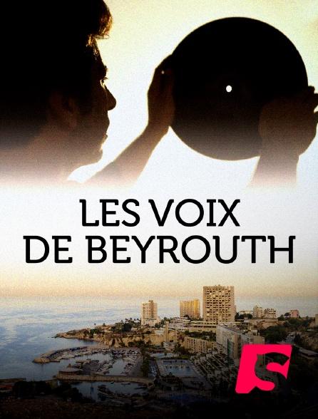 Spicee - Vinyl Bazaar : les voix de Beyrouth