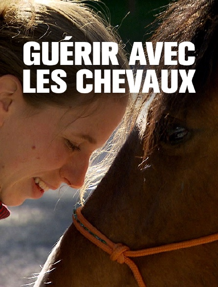 Guérir avec les chevaux