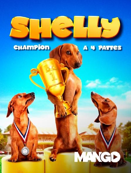 Mango - Shelly, champion à quatre pattes