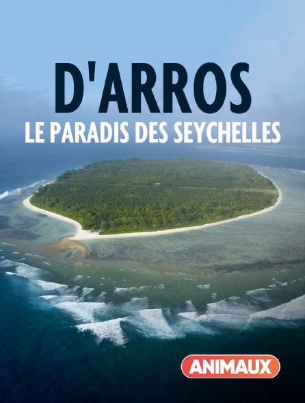 Animaux - D'Arros, le paradis des Seychelles