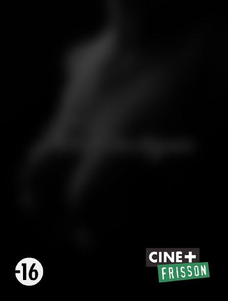 Ciné+ Frisson - Extases impudiques