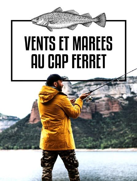Vents et marées au Cap Ferret