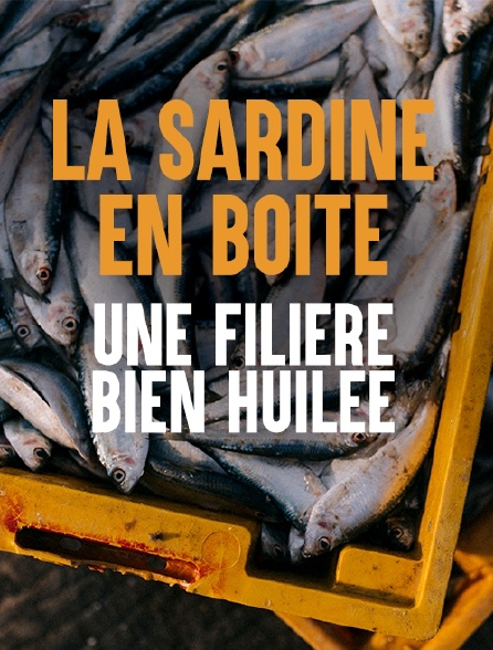 La sardine en boîte, une filière bien huilée