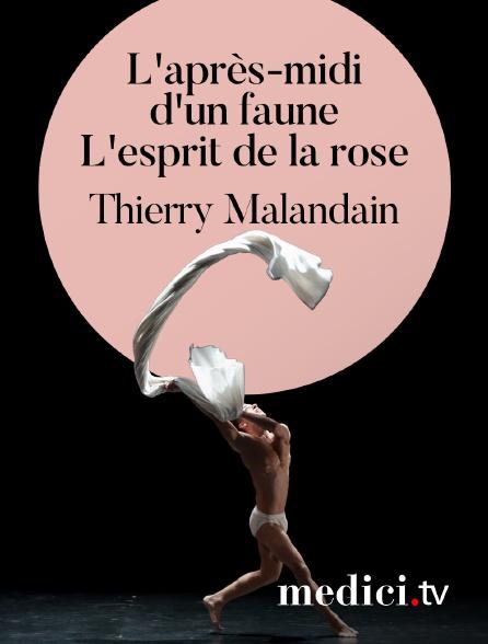 Medici - L'après-midi d'un faune & L'esprit de la rose, Thierry Malandain - Musique de Debussy, Weber - Malandain Ballet Biarritz