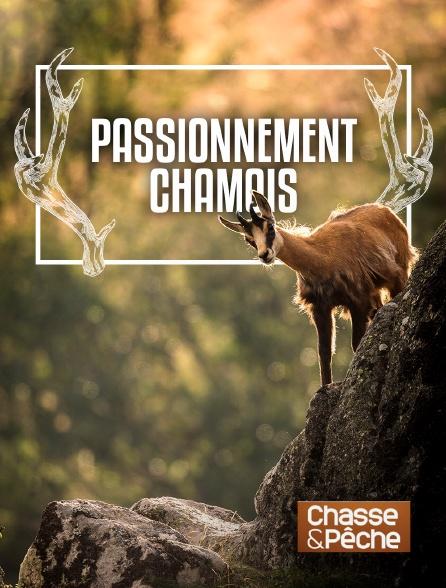 Chasse et pêche - Passionnément chamois