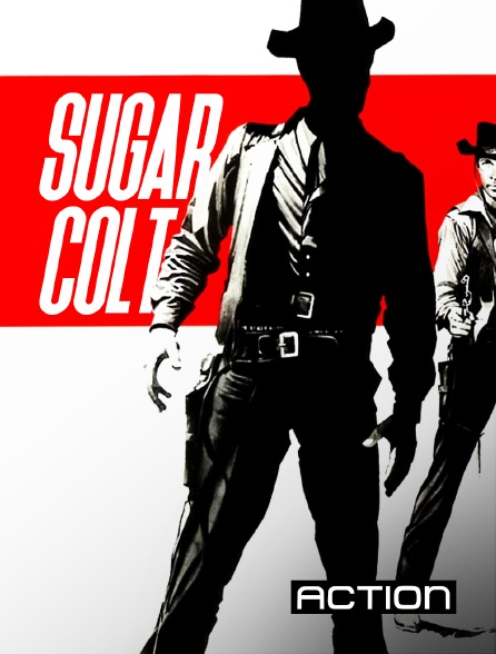 Action - Sugar Colt