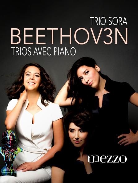 Mezzo - Le Trio Sōra à la Fondation Singer Polignac : Beethoven