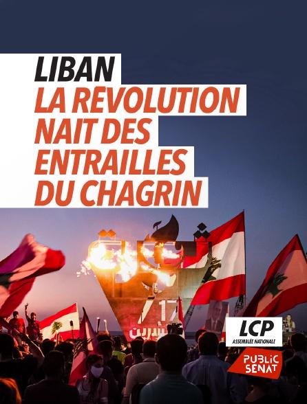LCP Public Sénat - Liban : la révolution nait des entrailles du chagrin