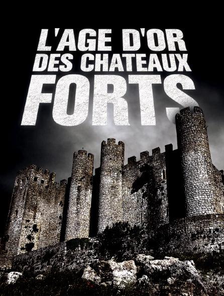L'âge d'or des châteaux forts