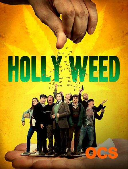 OCS - Holly Weed