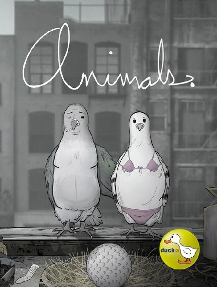 Duck TV - Animals