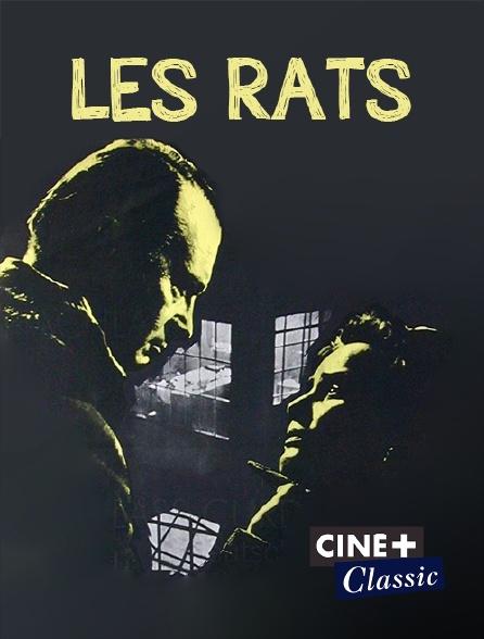 Ciné+ Classic - Les rats