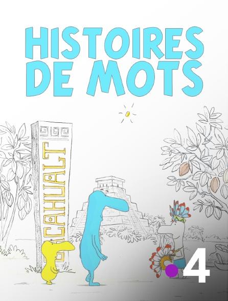 France 4 - Histoires de mots
