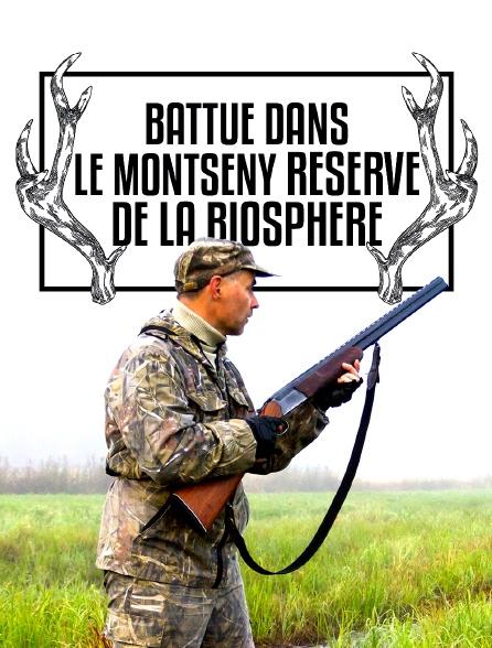Battue dans le Montseny, réserve de la biosphère