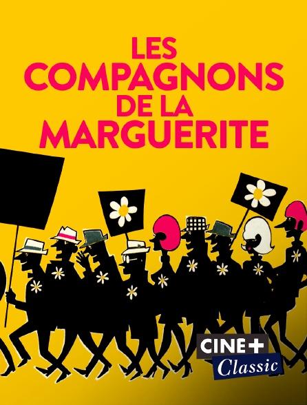 Ciné+ Classic - Les compagnons de la marguerite