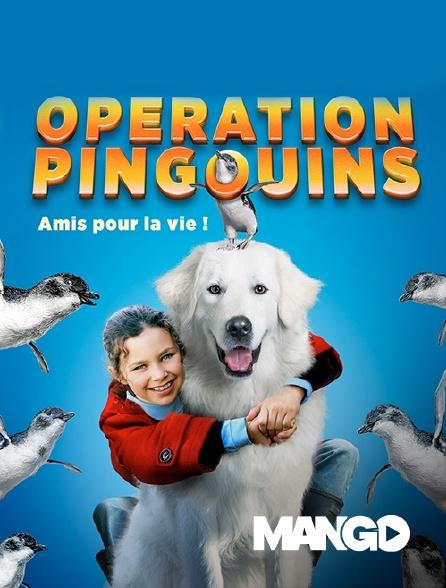 Mango - Opération pingouins