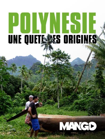 Mango - Polynésie : une quête des origines