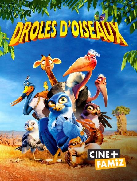 Ciné+ Famiz - Drôle d'oiseau