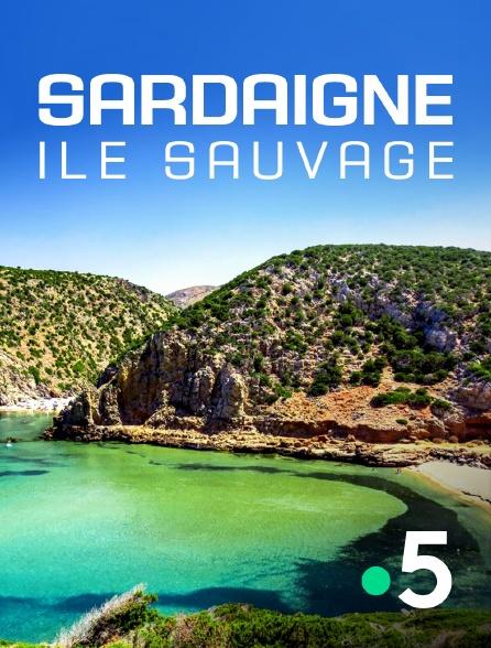 France 5 - Sardaigne, île sauvage