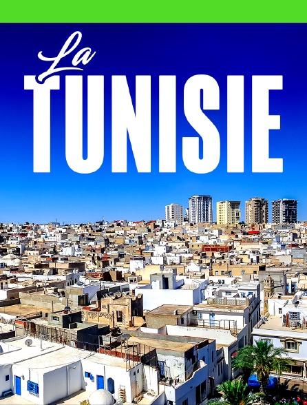 La Tunisie d'Alexandre Roubtzoff