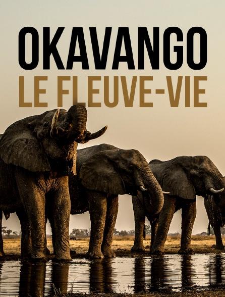 Okavango, le fleuve-vie
