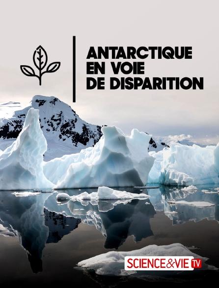 Science et Vie TV - Antarctique en voie de disparition