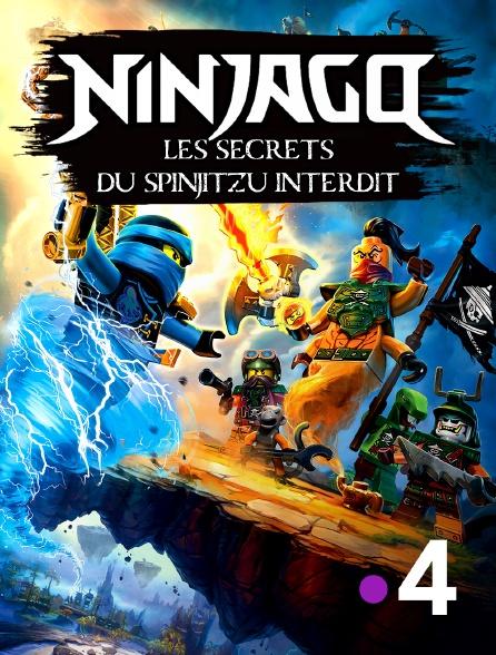 France 4 - Ninjago *2019