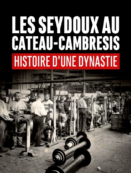 Les Seydoux au Cateau-Cambrésis. Histoire d'une dynastie