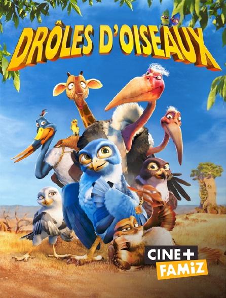 Ciné+ Famiz - Drôles d'oiseaux