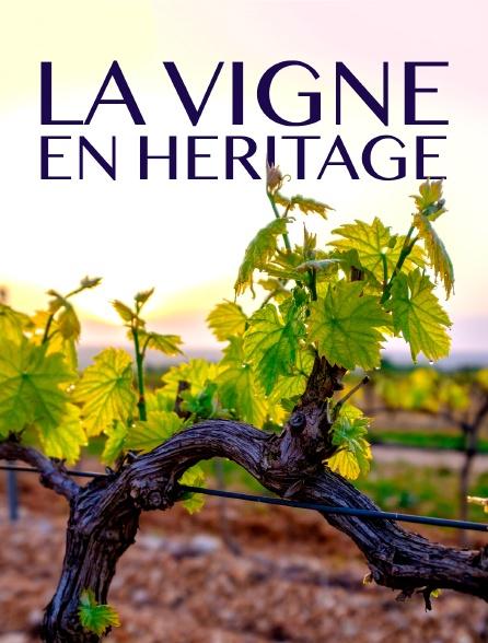 La vigne en héritage