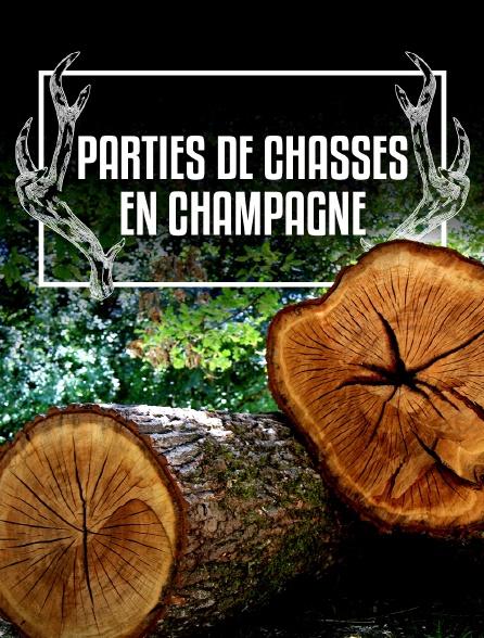Parties de chasses en Champagne