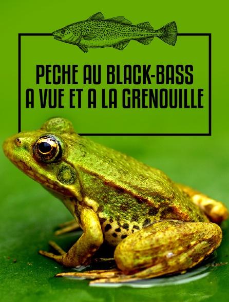 Pêche au black-bass à vue et à la grenouille