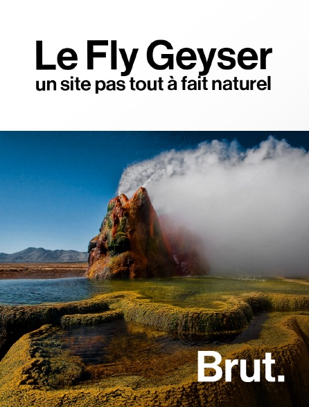 Brut - Le Fly Geyser : un site pas tout à fait naturel