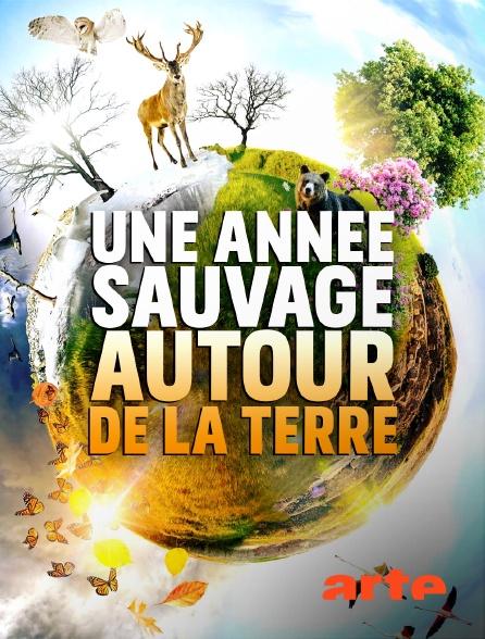 Arte - Une année sauvage autour de la terre