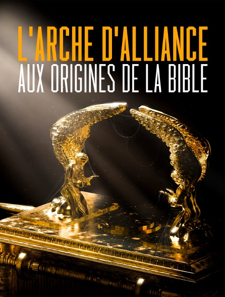 L'Arche d'alliance, aux origines de la Bible