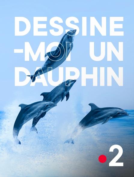 France 2 - Paris insolite (Dessine-moi un dauphin)