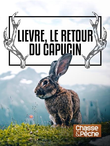 Chasse et pêche - Lièvre, le retour du capucin